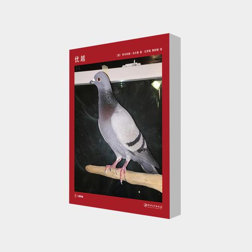 """""""网红""""艺术家阿马利娅·乌尔曼 :《优越》艺术书 商品图0"""