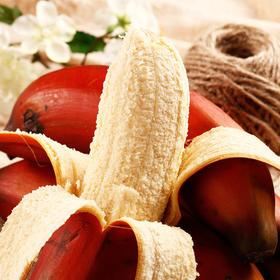 漳州软妹 红美人香蕉!拨开表皮 果肉饱满,口感软糯香甜,欲罢不能红香蕉~