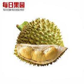巴掌金枕榴莲 精选约1.75斤 小榴莲 新鲜水果 泰国进口金枕头榴莲小果-864834