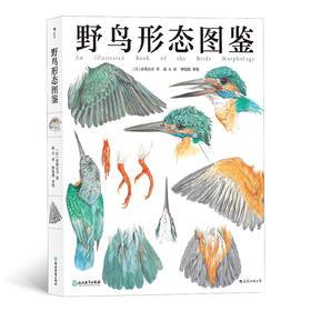 野鸟形态图鉴(关于51种野鸟的翼、足、喙、眼 自然观察者用画笔记录下的飞羽邂逅)
