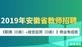 2019年安徽教师招聘《职测(D类)+综合应用(D类)》师业有成班
