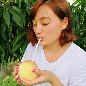 无锡阳山水蜜桃 一口爆汁可以喝的水蜜桃礼盒装顺丰包邮