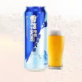 雪花勇闯天涯500ml-200055