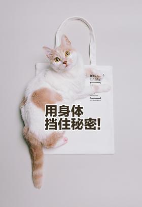 【预售,5月27日起陆续发货】城市的10000种可能 限定帆布袋