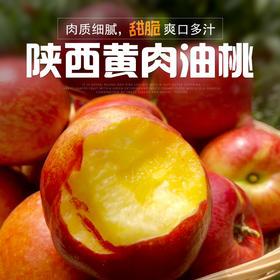 陕西黄肉油桃农家黄心油桃当季新鲜水果现摘现发3斤装、5斤装包邮