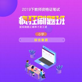 【小学综合素质】2019下教师资格证笔试疯狂刷题班