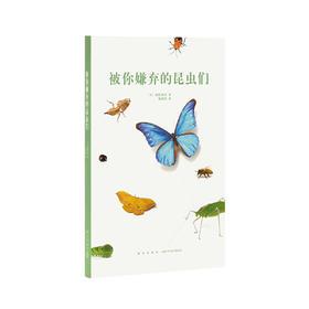 读小库14岁懂社会系列《被你嫌弃的昆虫们》12岁以上青少年自然科普百科儿童书