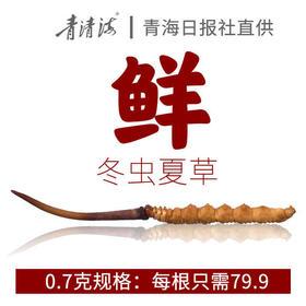 【青海日报直供】2019新鲜冬虫夏草0.7克/根