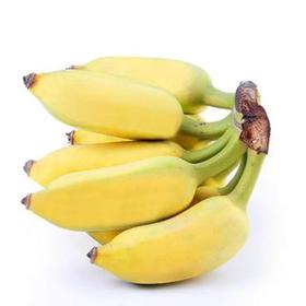 贵州特产糯香甜糯米蕉3斤/5斤