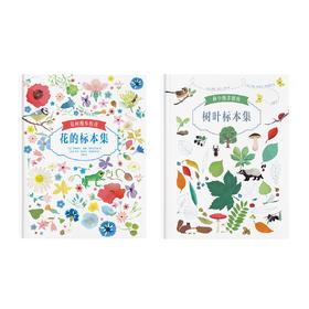 自然笔记本《花间漫步指南:花的标本集》《林中漫步指南:树叶标本集》 读小库12岁以上