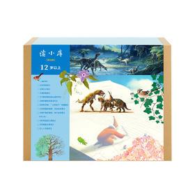 读小库 12岁以上 书箱套装第九辑(共11册)儿童书绘本 课外读物