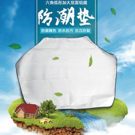 面包树双面铝膜野餐防潮垫