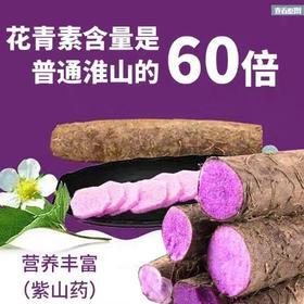 [雪尔商行]有机紫淮山20斤启售