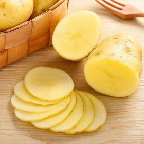 土豆马铃薯10斤新鲜蔬菜农家自种黄皮红洋芋批发小土豆黄心带箱