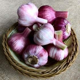 河南紫皮大蒜5斤/8斤