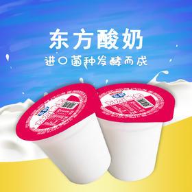 【内购】东方普通酸奶140g*20