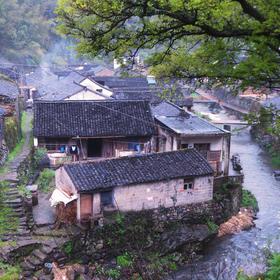 杭州出发:11.2徒步千年竹海古道,探访余姚的'小丽江'(1天活动多期)