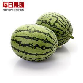 大兴小麒麟瓜 3.2元/斤 精选4斤装 精甜小西瓜袖珍小甜西瓜时令新鲜水果-864838