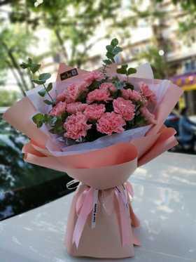 芳华  (粉色康乃馨19枝+尤加利)