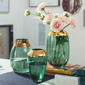 奈尔现代轻奢简约水培透明插花摆件客厅餐桌干花瓶摆设创意