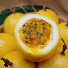 现采现发 稀有品种海南黄金百香果一级果 果肉饱满