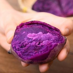 越南品种新鲜小紫薯迷你地瓜番薯小香薯5斤/10斤