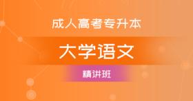 成考专升本大学语文(精讲班)