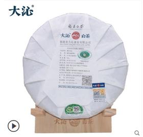 大沁福鼎 白茶 2018十三坪知青 白毫银针茶饼300g 福建茶叶白茶