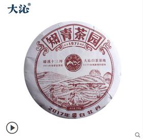 大沁福鼎白茶 2017十三坪知青白牡丹茶饼 明前新茶300g高山茶