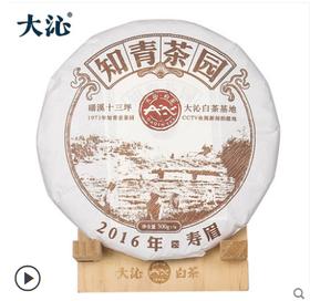 大沁福鼎白茶 2016十三坪知青寿眉饼 福鼎高山白茶饼300g福建茶叶