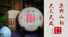 云南普洱 来自景迈勐海临沧 百年古园古树古茶 传统8大工艺全人工精心制作