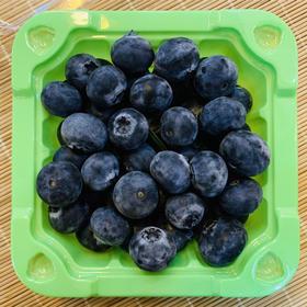 【鲜果预售】丹江口官山特级蓝莓100g