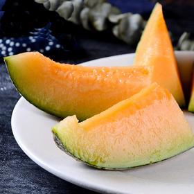 新疆哈密瓜 网纹瓜 初恋般的甜蜜 土壤肥沃 光照充足 一个瓜3-4斤包邮