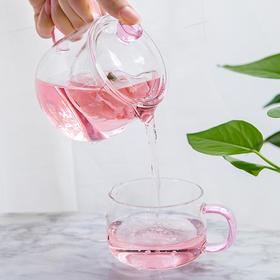 雅集 泡茶壶玻璃过滤家用玻璃女茶壶花茶壶耐高温办公简易茶具套装