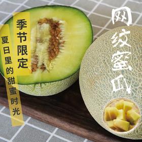 [下单后2-6天发货 网纹蜜瓜] 一瓜一藤 (4.3-5斤 2个瓜)