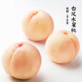 [白凤水蜜桃]桃汁满盈 香气馥郁 5斤装