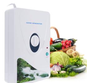 【小家电】小家电活氧机水果蔬菜清洗解毒器臭氧发生器220V/110V空气净化器