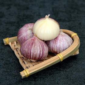 云南特色ㅣ紫皮独头蒜,皮薄肉厚,蒜味浓郁,辛辣爽口~ 3斤装