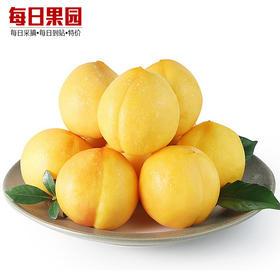 特级蒙阴黄油桃 精选3斤装 黄心黄肉新鲜水果黄金桃子油桃-864842