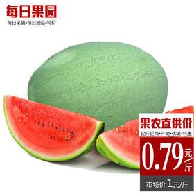 优级红宝西瓜 精选单个14斤 新鲜水果 新红宝西瓜-864830