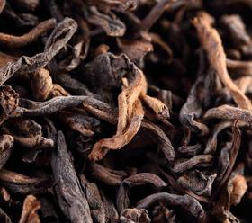云南勐海古树普洱熟茶  500+200积分