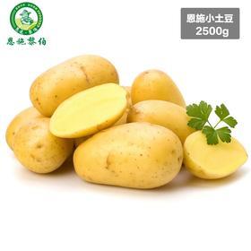 [黎伯农业] 恩施黎伯农业恩施马尔科小土豆5斤装