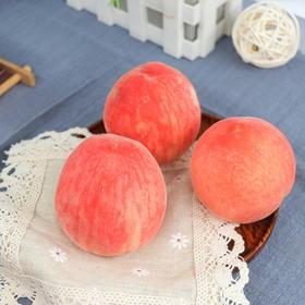 当季上新 | 陕西渭南水蜜桃 果香浓郁  清甜入心 ~ 新鲜现摘