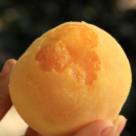 【看得见的美味】蜜桃之都蒙阴锦绣黄桃 ,果香浓郁,口感香甜,皮薄多汁