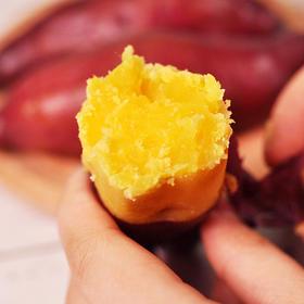 正宗临安天目山小香薯 现挖现发 糯甜清香 5斤装