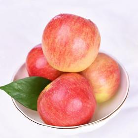 嘎啦苹果水果4.8~5.2斤包邮现摘现发,清脆皮薄 味甜微酸