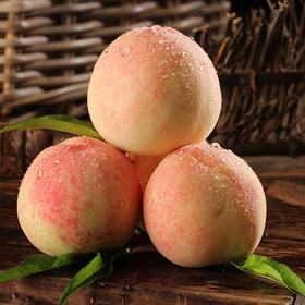 当季上新ㅣ奉化水蜜桃 能捏出水的水蜜桃 现摘现发 12枚装  空运发货