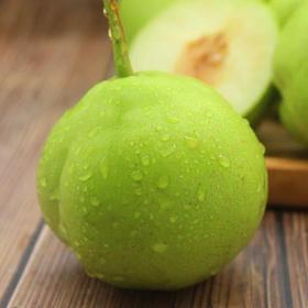 梨子新鲜5斤现摘早酥梨当季水果直批整箱香酥梨应季脆甜青皮梨10