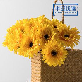 高仿真花艺室内客厅摆设装饰绢花假花干花 短杆非洲菊H