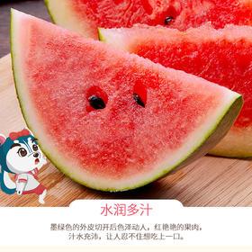 【夏季水果】郧阳区安阳西瓜2枚装(总计20斤以上)丨汁丰瓤甜丨包邮到家